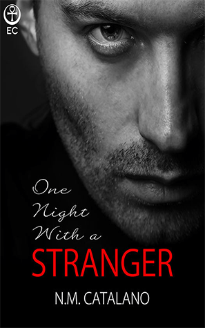 One Night with A Stranger: Book 1 (Evolution/Stranger)